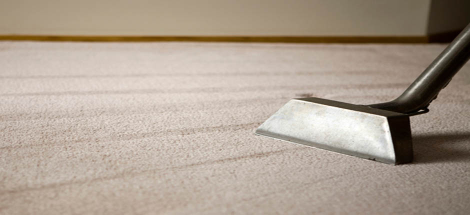 carpet cleaners colchester
