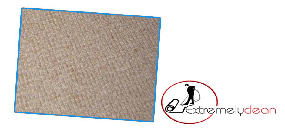 extremely clean carpets colchester